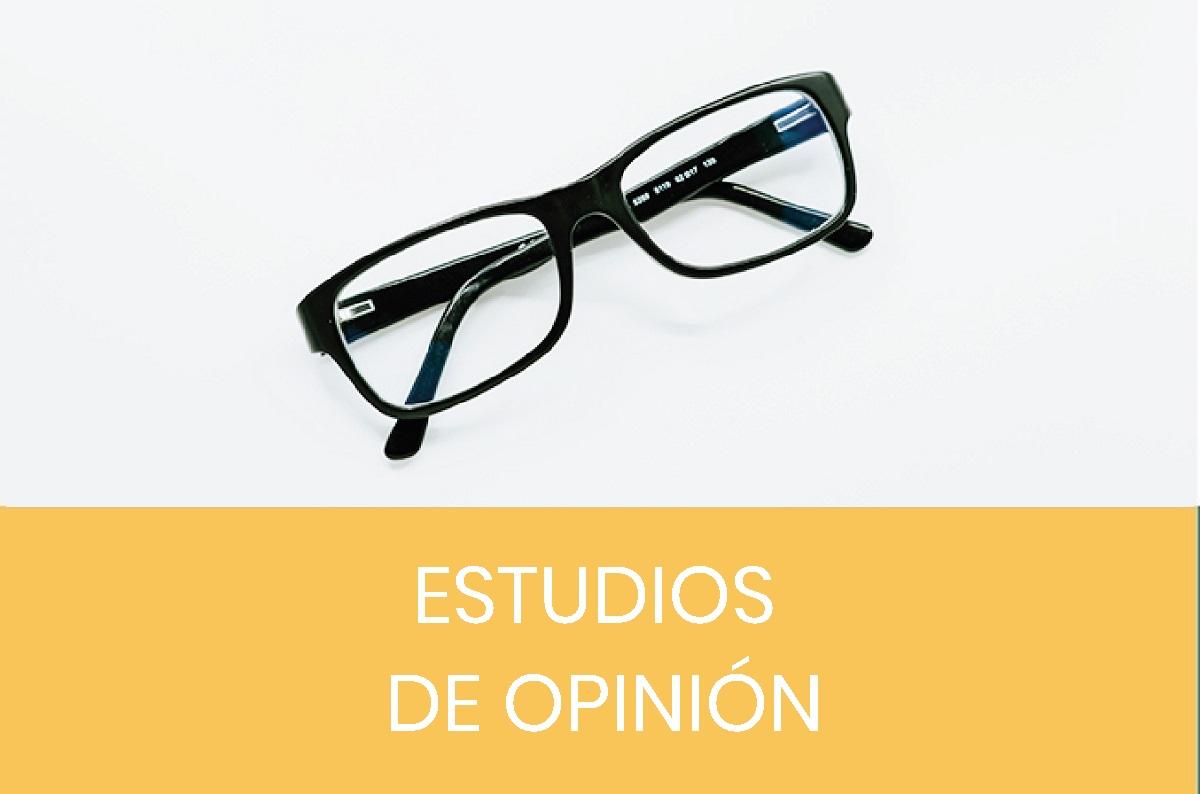 Estudios de opinión